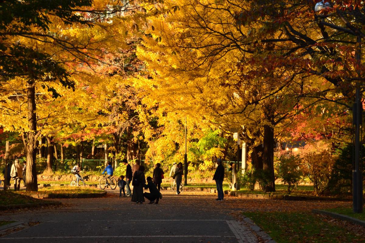 15:48 中島公園