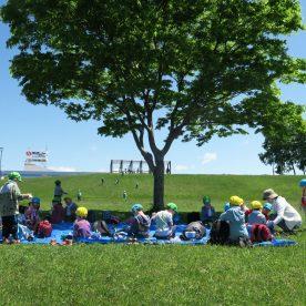 6月5日 札幌市厚別区もみじ台 熊ノ沢公園